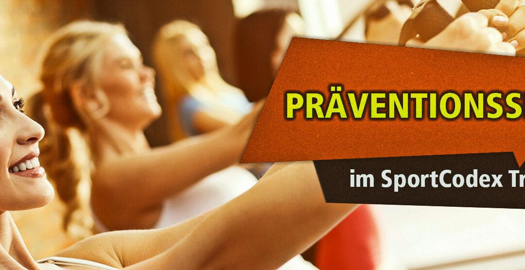 Kursbeschreibung Functional Fitness Training